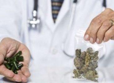 Pela primeira vez, Anvisa registra remédio à base de maconha