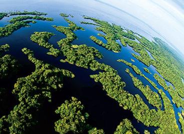 Inscrições para Jovem Ambientalista vão até dia 17