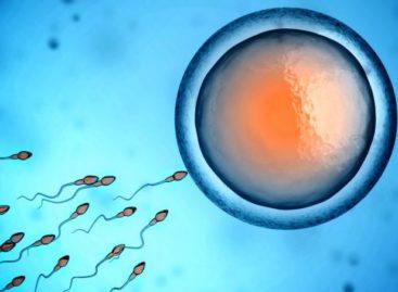 Contraceptivo unissex e sem efeito colateral é encontrado em plantas: como funciona?