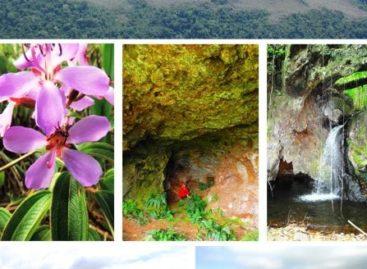 Pará vai abrigar maior parque de cavernas em rochas ferríferas do mundo