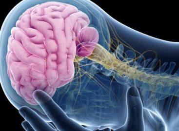 Médica ensina como aliviar dor de cabeça em poucos minutos sem nenhum remédio
