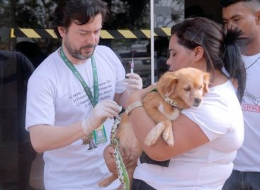 1ª Cãominhada de Parauapebas vacina 148 cães contra a raiva